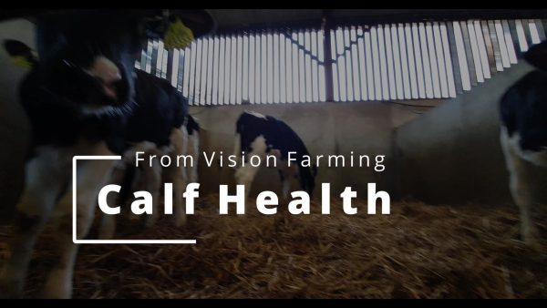 Calf Health Course
